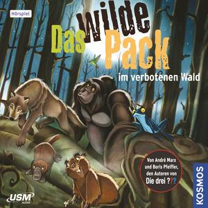 Das wilde Pack 06: Das Wilde Pack im verbotenen Wald