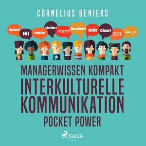 Managerwissen kompakt - Interkulturelle Kommunikation - Pocket Power