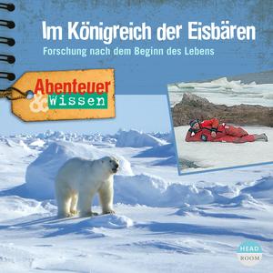 Im Königreich der Eisbären