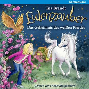 Eulenzauber (13) Das Geheimnis des weißen Pferdes