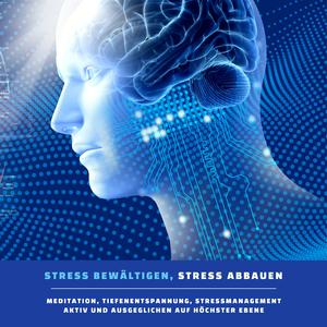 Stress bewältigen, Stress abbauen (Meditation, Tiefentspannung, Stressmanagement)