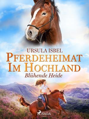 Pferdeheimat im Hochland - Blühende Heide