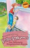 Vergrößerte Darstellung Cover: Die raffinierte Ringelsocken-Bande. Externe Website (neues Fenster)
