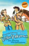 Vergrößerte Darstellung Cover: Der falsche Pferdeflüsterer. Externe Website (neues Fenster)
