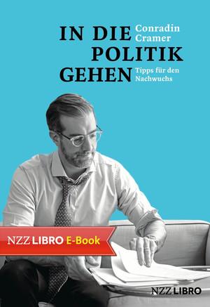 In die Politik gehen