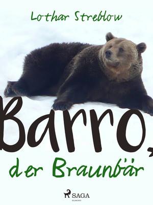Barro, der Braunbär