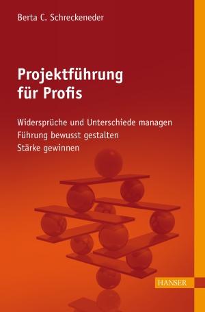 Projektführung für Profis