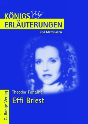 Erläuterungen zu Theodor Fontane, Effi Briest