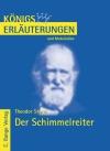 Erläuterungen zu Theodor Storm, Der Schimmelreiter