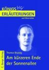 Erläuterungen zu Thomas Brussig, Am kürzeren Ende der Sonnenallee