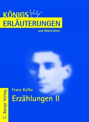 Erläuterungen zu Franz Kafka, Erzählungen II : Teil 2