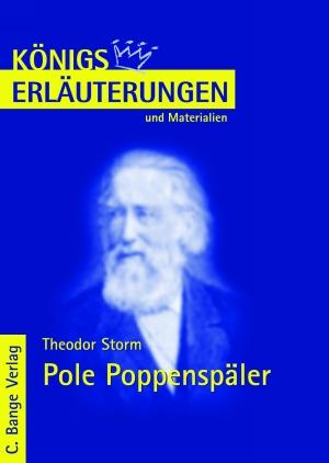 Erläuterungen zu Theodor Storm, Pole Poppenspäler