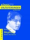 Vergrößerte Darstellung Cover: Erläuterungen zu Klaus Mann, Mephisto, Roman einer Karriere. Externe Website (neues Fenster)
