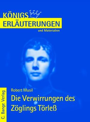 Erläuterungen zu Robert Musil, Die Verwirrungen des Zöglings Törleß