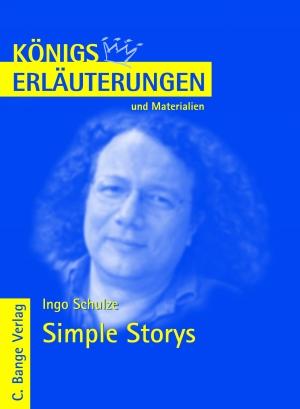 Erläuterungen zu Ingo Schulze, Simple storys