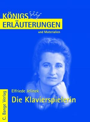 Erläuterungen zu Elfriede Jelinek, Die Klavierspielerin