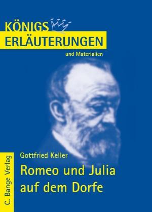 Erläuterungen zu Gottfried Keller, Romeo und Julia auf dem Dorfe