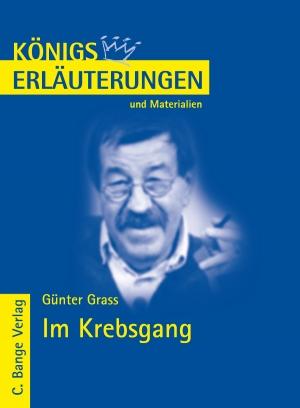 Erläuterungen zu Günter Grass, Im Krebsgang