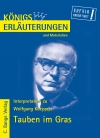 Erläuterungen zu Wolfgang Koeppen, Tauben im Gras