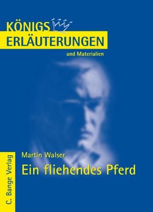 Erläuterungen zu Martin Walser, Ein fliehendes Pferd