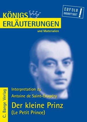 """Erläuterungen zu Antoine de Saint-Exupéry """"Der kleine Prinz"""""""