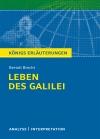 """Vergrößerte Darstellung Cover: Textanalyse und Interpretation zu Bertolt Brecht, """"Leben des Galilei"""". Externe Website (neues Fenster)"""
