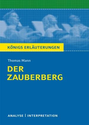 """Textanalyse und Interpretation zu Thomas Mann, """"Der Zauberberg"""""""