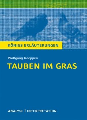 """Textanalyse und Interpretation zu Wolfgang Koeppen, """"Tauben im Gras"""""""