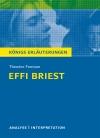 """Vergrößerte Darstellung Cover: Textanalyse und Interpretation zu Theodor Fontane, """"Effi Briest"""". Externe Website (neues Fenster)"""