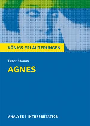 "Textanalyse und Interpretation zu Peter Stamm, ""Agnes"""