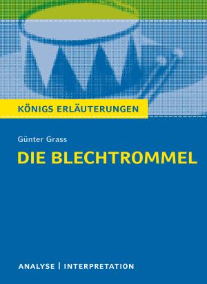 """Textanalyse und Interpretation zu Günter Grass, """"Die Blechtrommel"""""""