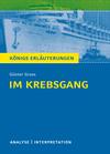 """Textanalyse und Interpretation zu Günter Grass, """"Im Krebsgang"""""""