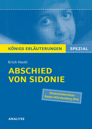"""Textanalyse und Interpretation zu Erich Hackl, """"Abschied von Sidonie"""""""