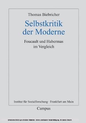Selbstkritik der Moderne