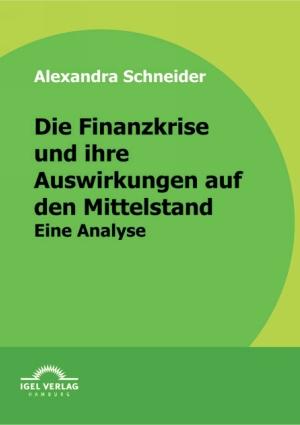 Die Finanzkrise und ihre Auswirkungen auf den Mittelstand