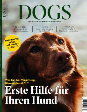 Dogs (03/2019)