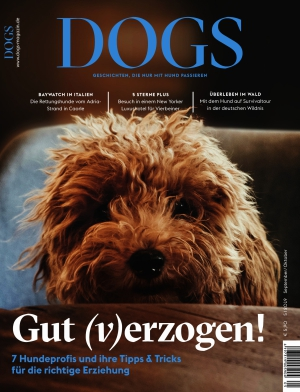 Dogs (05/2019)