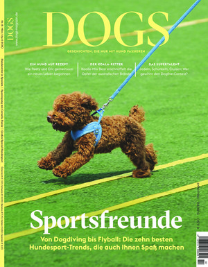Dogs (02/2020)