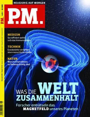 P.M. (06/2020)