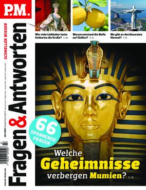 P.M. Fragen & Antworten (07/2020)