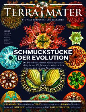 Terra Mater (04-05/2020)