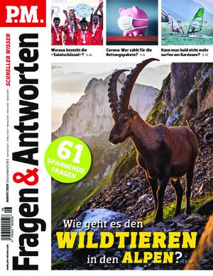 P.M. Fragen & Antworten (08/2020)