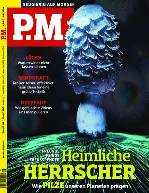 P.M. (09/2020)