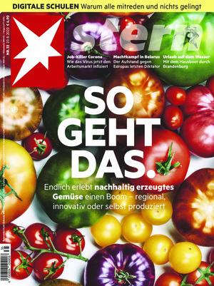 Stern (35/2020)