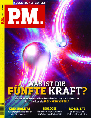 P.M. (10/2020)
