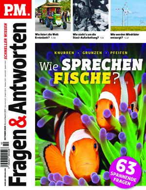 P.M. Fragen & Antworten (10/2020)