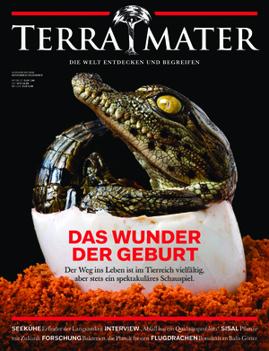 Terra Mater (06/2020)