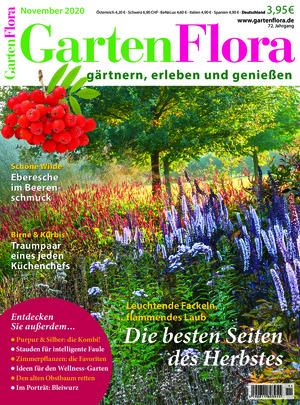 GartenFlora (11/2020)