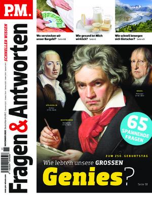 P.M. Fragen & Antworten (11/2020)