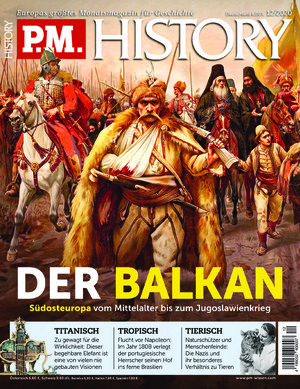 P.M. HISTORY (12/2020)